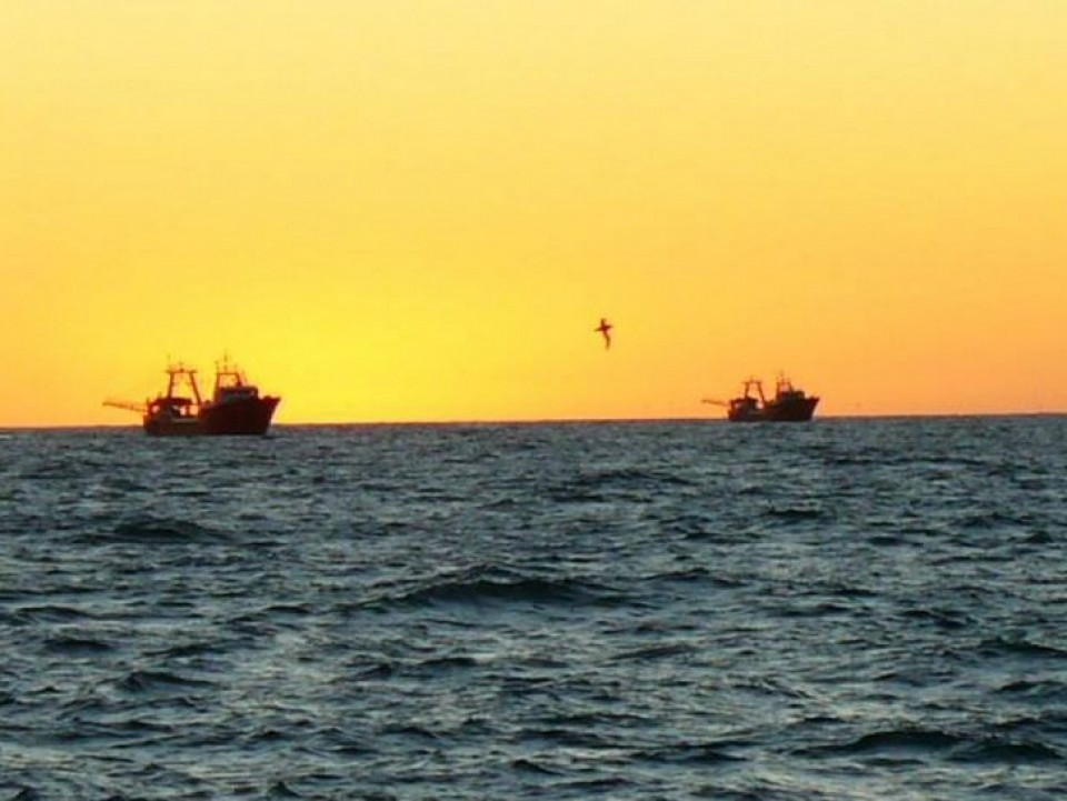 La ONU ha mostrado esperanzas de que en la próxima reunión ministerial de la Organización Mundial del Comercio (OMC), que se celebrará en Buenos Aires en diciembre, se tomen decisiones para regular o prohibir los subsidios a la industria de la pesca.